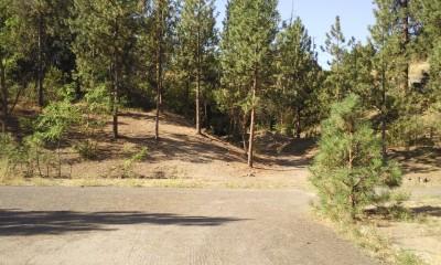 High Bridge Park, Main course, Hole 14 Long approach
