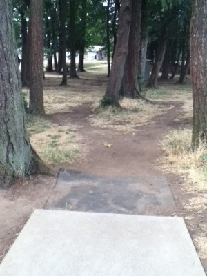 Glenwood Community Church, Main course, Hole 4 Tee pad