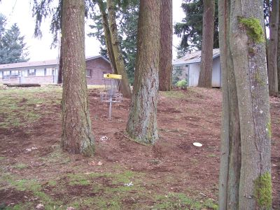 Glenwood Community Church, Main course, Hole 4 Midrange approach