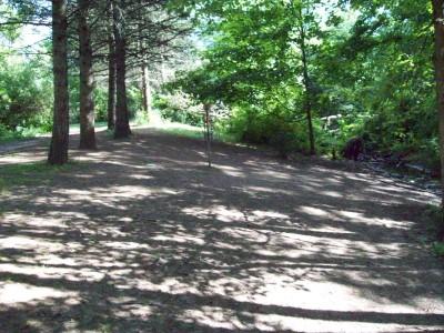 Grand Woods Park, Main course, Hole 8 Putt