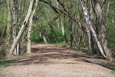 Grand Woods Park, Main course, Hole 2 Tee pad