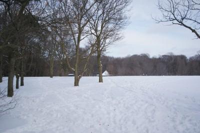 Grand Woods Park, Main course, Hole 18 Tee pad