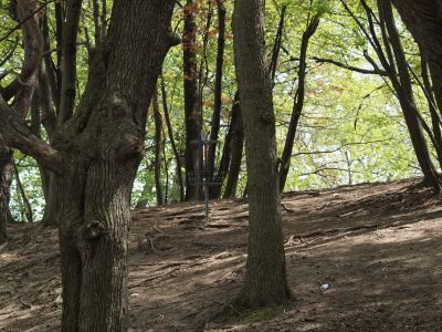 Grand Woods Park, Main course, Hole 17 Short approach