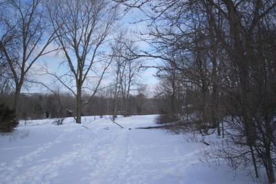 Grand Woods Park, Main course, Hole 11 Tee pad