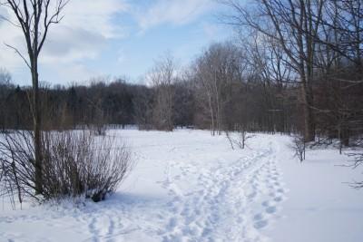 Grand Woods Park, Main course, Hole 6 Tee pad