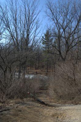 Addison Oaks County Park, Main course, Hole 10 Tee pad