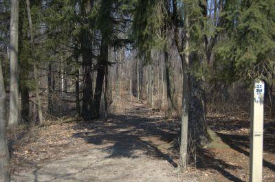 Addison Oaks County Park, Main course, Hole 23 Tee pad