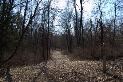 Addison Oaks County Park, Main course, Hole 11 Tee pad
