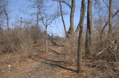 Addison Oaks County Park, Main course, Hole 20 Putt