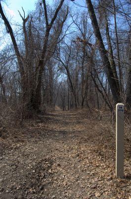 Addison Oaks County Park, Main course, Hole 14 Tee pad