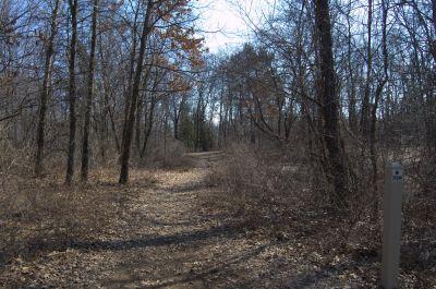 Addison Oaks County Park, Main course, Hole 8 Tee pad