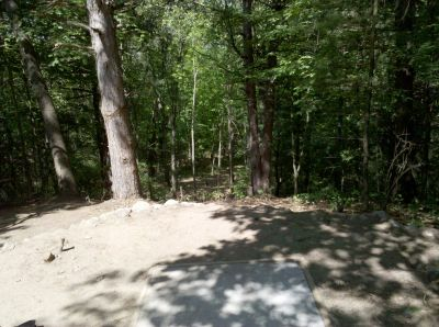 Fallasburg Park, Main course, Hole 14 Tee pad