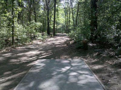 Fallasburg Park, Main course, Hole 12 Tee pad