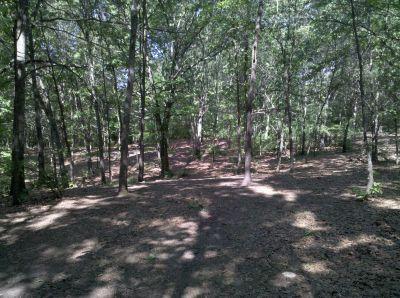 Fallasburg Park, Main course, Hole 11 Midrange approach