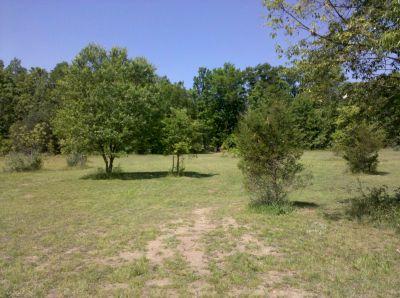 Fallasburg Park, Main course, Hole 16 Long approach