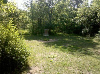 Fallasburg Park, Main course, Hole 2 Putt