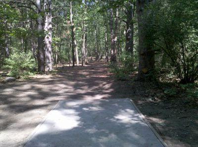 Fallasburg Park, Main course, Hole 11 Tee pad