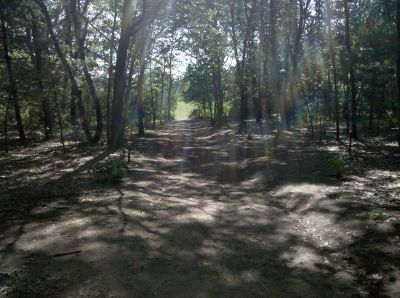 Fallasburg Park, Main course, Hole 7 Midrange approach