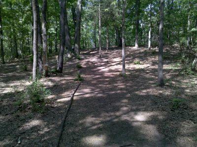 Fallasburg Park, Main course, Hole 10 Midrange approach