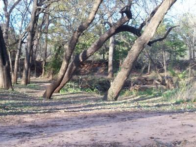 Hoyt Grove, Main course, Hole 14 Tee pad