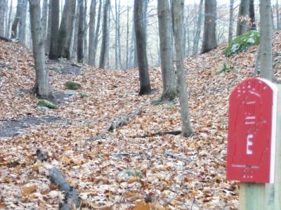 Mason County Park, Beauty, Hole E Tee pad