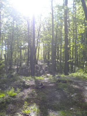 Mason County Park, Beauty, Hole B Tee pad