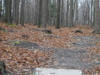 Mason County Park, Beauty, Hole C Tee pad