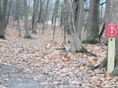 Mason County Park, Beauty, Hole D Tee pad