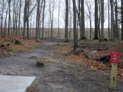 Mason County Park, Beauty, Hole 16 Tee pad