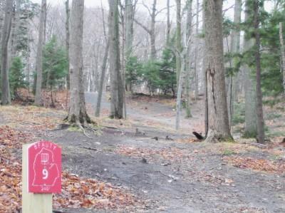 Mason County Park, Beauty, Hole 9 Tee pad