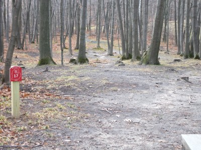 Mason County Park, Beauty, Hole 17 Tee pad