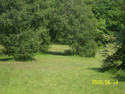 Mason County Park, Beast, Hole 17 Tee pad