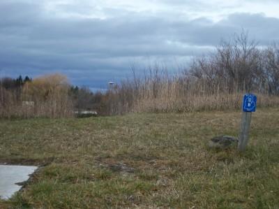 Mason County Park, Beast, Hole B Tee pad