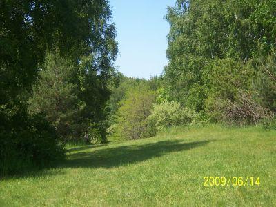 Mason County Park, Beast, Hole 9 Tee pad