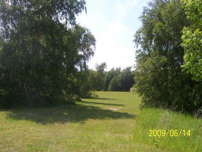 Mason County Park, Beast, Hole 12 Tee pad