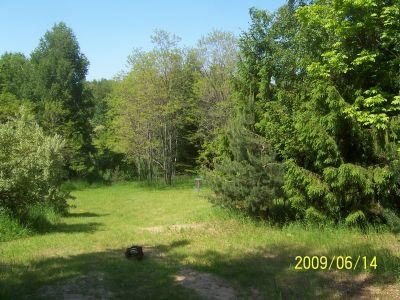 Mason County Park, Beast, Hole 9 Midrange approach