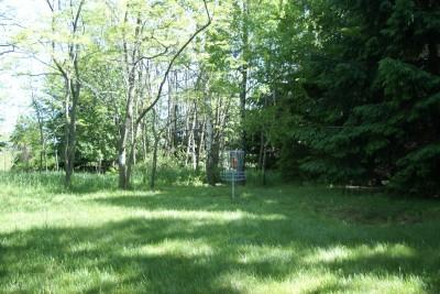 Mason County Park, Beast, Hole E Putt
