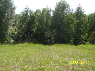 Mason County Park, Beast, Hole D Tee pad