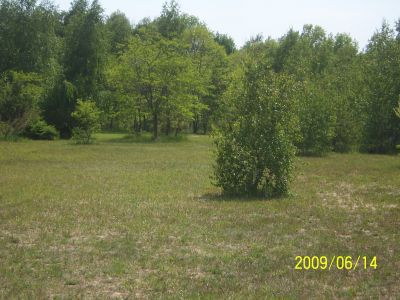 Mason County Park, Beast, Hole 13 Tee pad