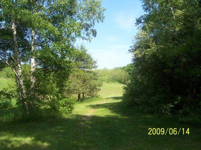 Mason County Park, Beast, Hole 10 Tee pad