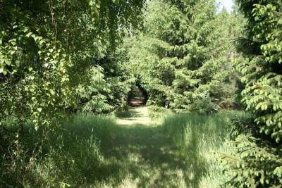 Mason County Park, Goliath, Hole A Tee pad