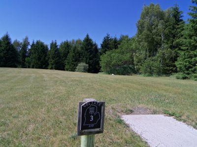 Mason County Park, Goliath, Hole 3 Tee pad
