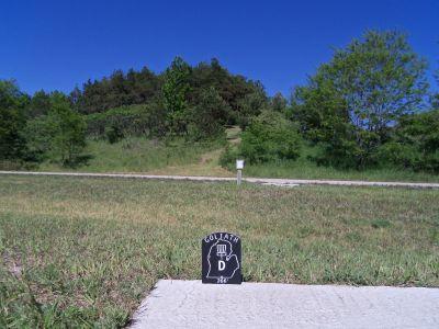 Mason County Park, Goliath, Hole D Tee pad