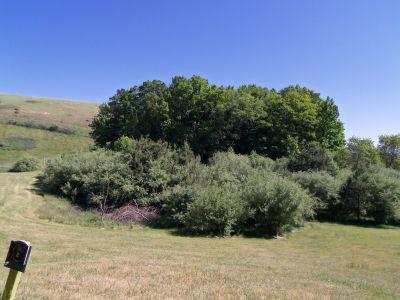 Mason County Park, Goliath, Hole E Tee pad