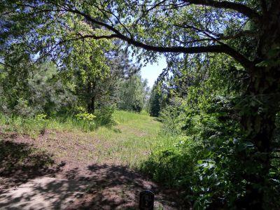 Mason County Park, Goliath, Hole 2 Tee pad