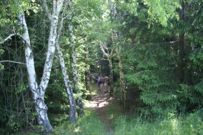 Mason County Park, Goliath, Hole B Tee pad