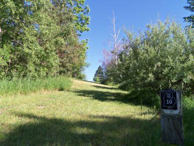 Mason County Park, Goliath, Hole 10 Tee pad