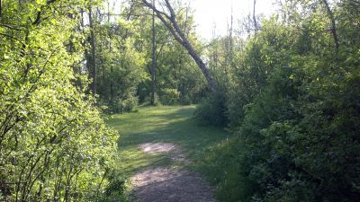 Chippewa Banks, Main course, Hole 8 Tee pad