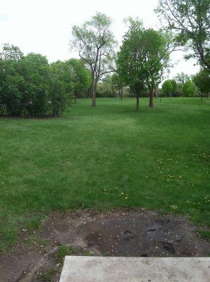 Kiwanis Woodlot Park, Main course, Hole 2 Tee pad
