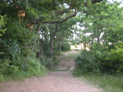 Kensington Metropark, Original course, Hole F Tee pad